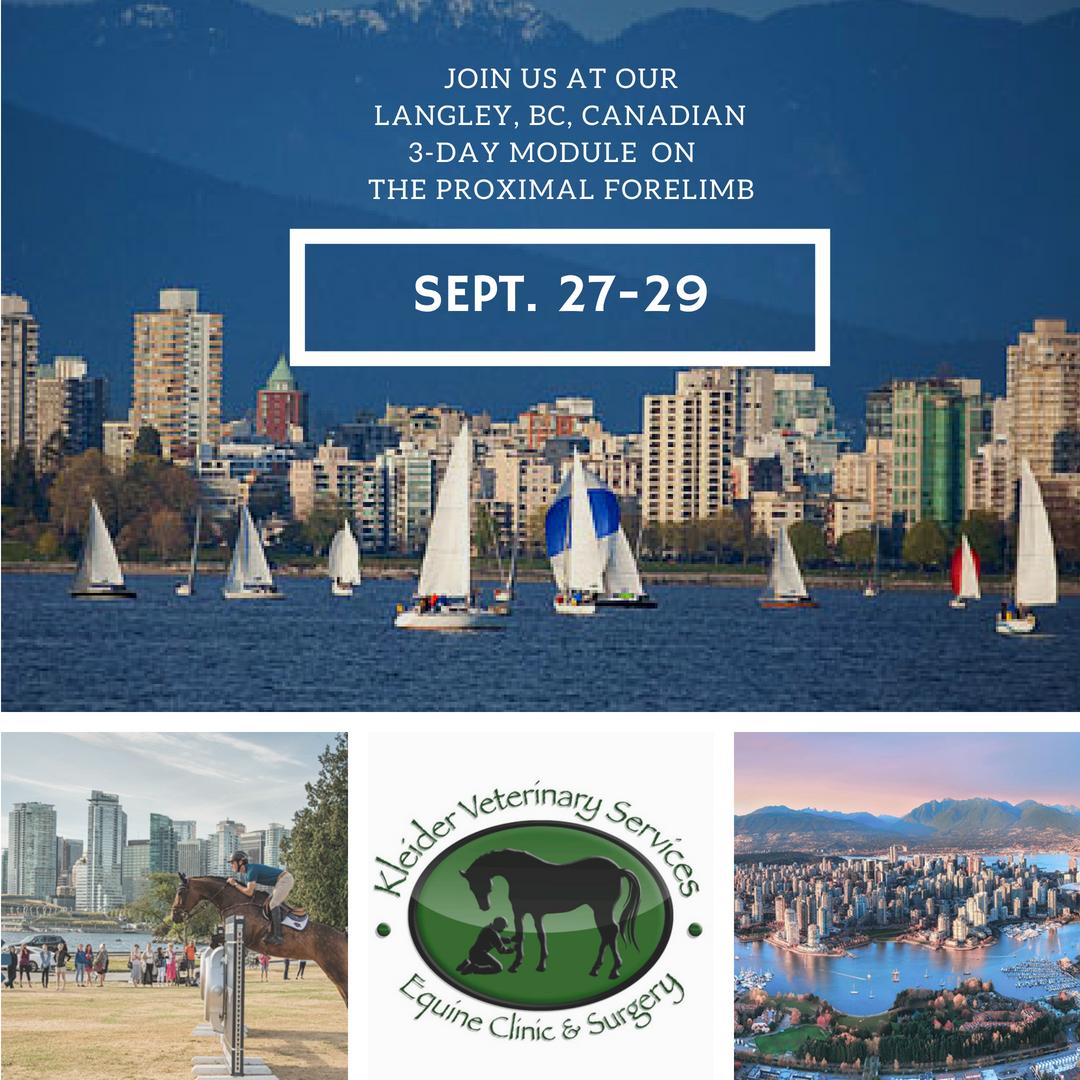 international society of equine locomotor pathology - 3-day